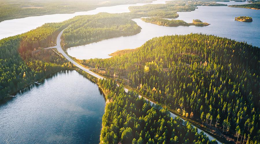Kuvituskuva, jossa maantie halkoo metsää järvimaisemassa auringonpaisteessa.