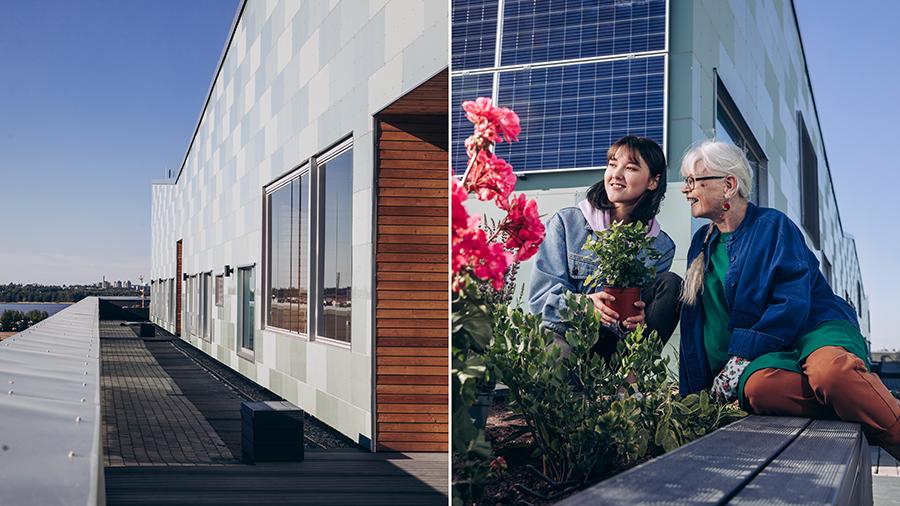 Kuvassa nuori ja vanhempi nainen rakennuksen katolla istuttamassa kukkia